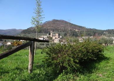 032-S.Andrea-di-Compito