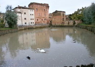 raduno-toscana-2013-etta-093-monteroni-darbia