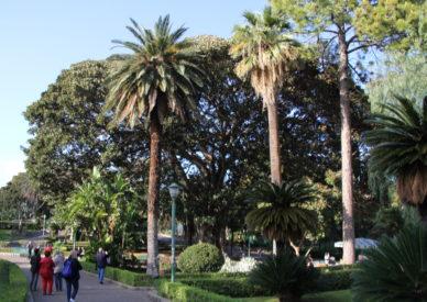 IMG_160411-Palermo giardini