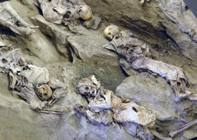 015 le mummie