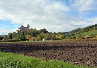 028 Torrechiara